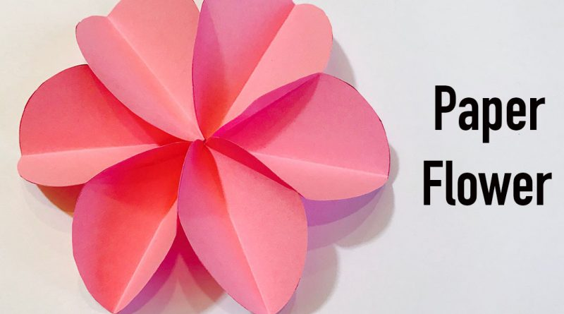 How To Make A 6 Circle Paper Flower Diy Craft Samantha S Mommy